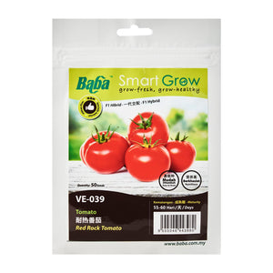 Tomato Red Rock Seeds VE-039 (50 Seeds), Seeds,Baba - greenleif.sg