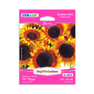 Ring Of Fire Sunflower Seeds