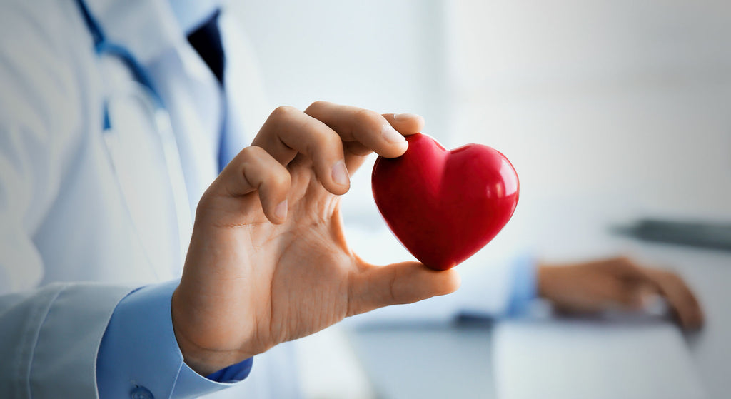 Which Supplements Support Good Cholesterol?