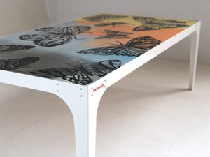 172. Hand Painted 'Butterflies' Large Colour Block Dining table