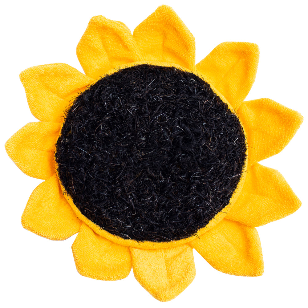 Scrubby Sunflower