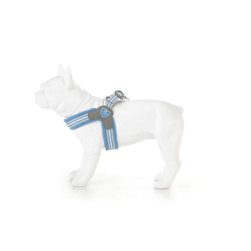 Light Blue Easy harness