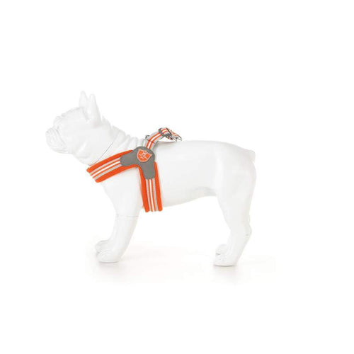 Orange Easy harness