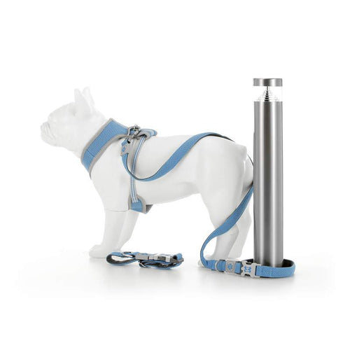 Light Blue Mesh  Harness, Collar, Lead Combination Set