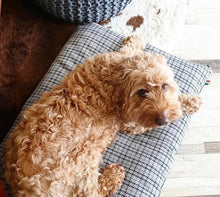 Load image into Gallery viewer, Tweed Dog Bed - Henley Cushion