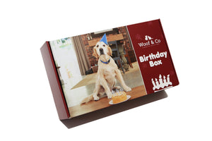 Birthday Treats - Luxury Doggy Birthday Box