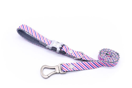 Breathable Mesh Dog Leash - Hugo & Hudson Easy Attachable Dog Lead