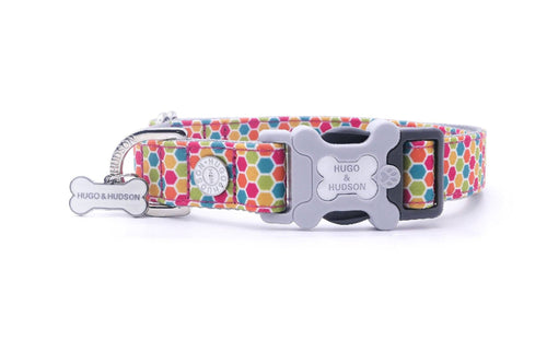 Hugo & Hudson Bone Clasp Collar - Hugo & Hudson Multi Geometric Premium Dog Collar