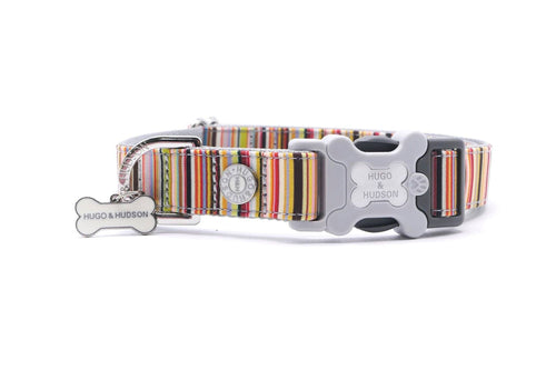 Hugo & Hudson Bone Clasp Collar - Hugo & Hudson Multi Stripe Premium Collar