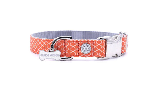 Metal Bucke Dog Collar - Hugo & Hudson Orange Geometric Premium Dog Collar