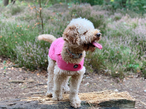 Woof & Co Baby Pink Water Resistant Jacket