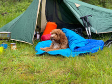 Load image into Gallery viewer, Sleeping Bag - Blue Doggy Sleeping Bags