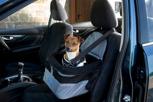 Travel - Travel Doggy Booster Seat