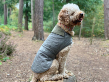 Load image into Gallery viewer, Woof & Co Green Water Resistant Jacket
