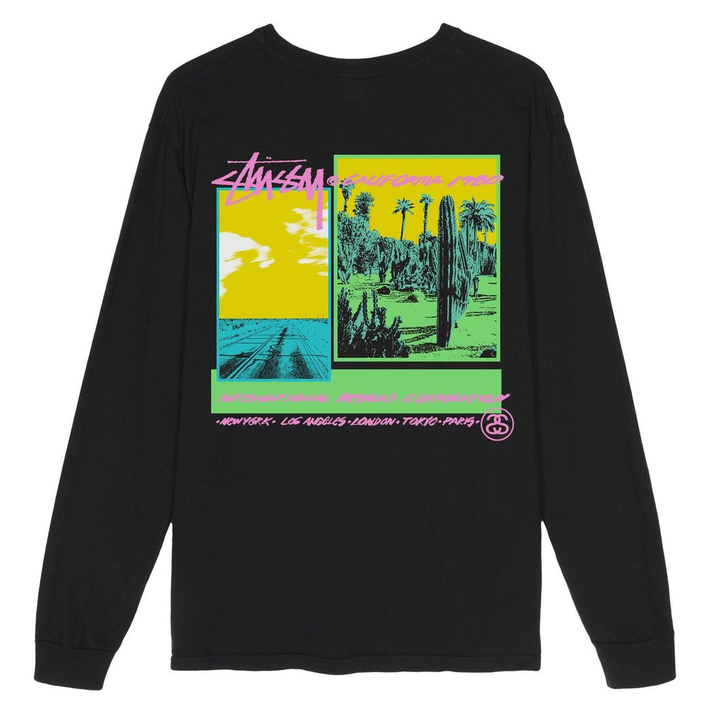 Stussy L/S Pigment Dyed Palm Desert T Shirt in Black
