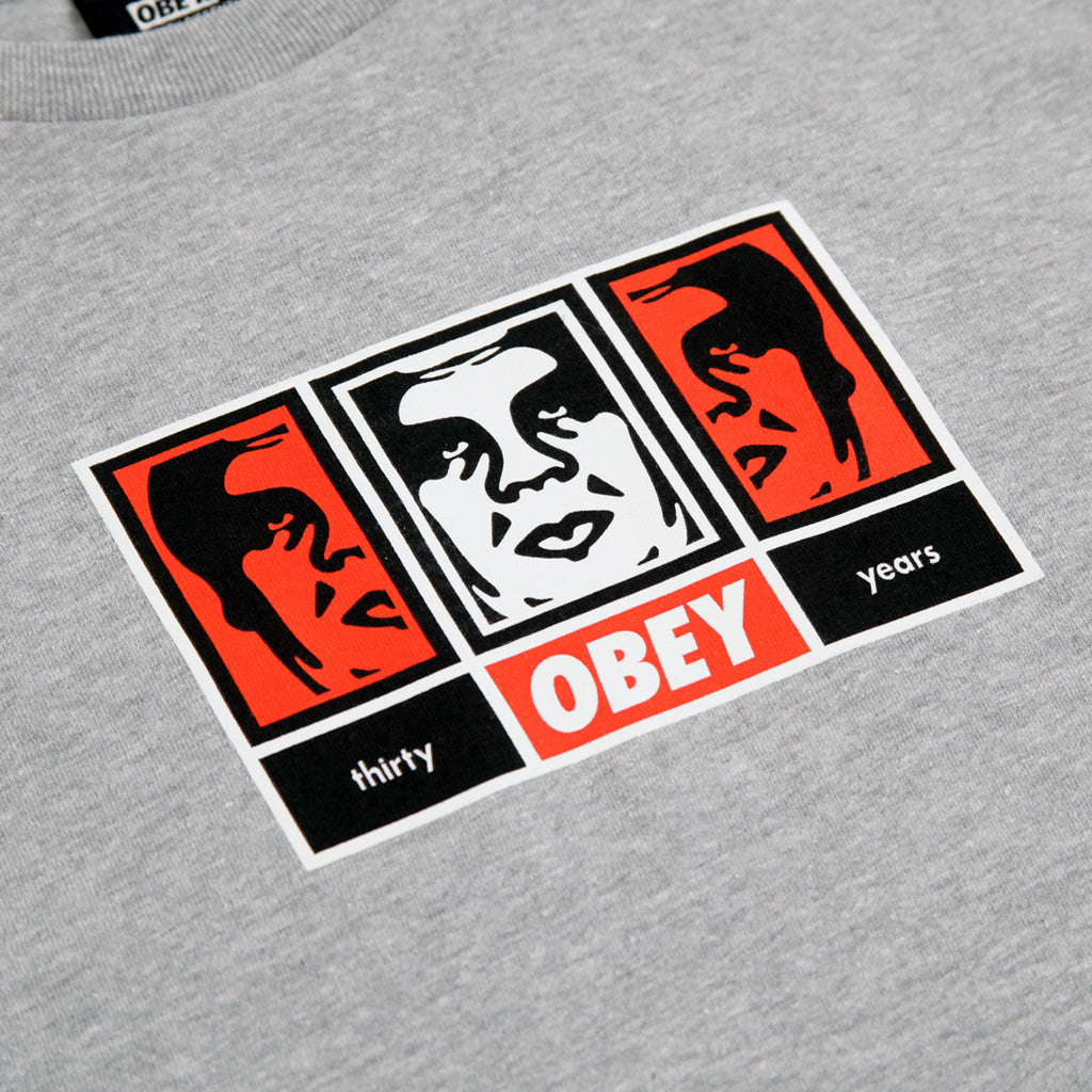 Obey Clothing 3 Faces 30 Years T Shirt in Heather Grey - Print