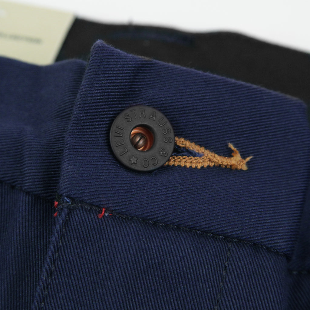 Levis Skateboarding Work Pant in Navy - Button