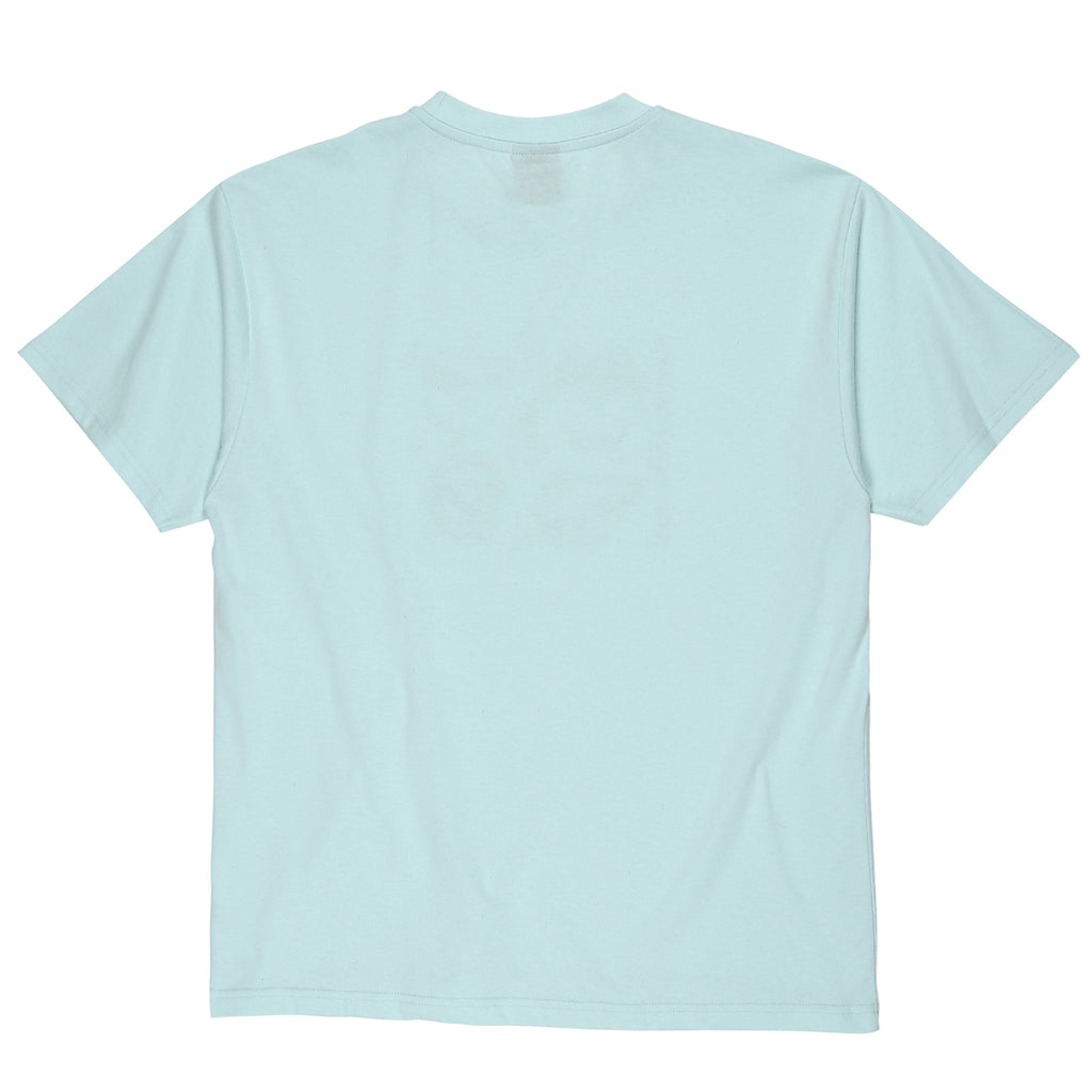 Polar Skate Co x Iggy NYC Alternative Youth T Shirt in Mint - Back