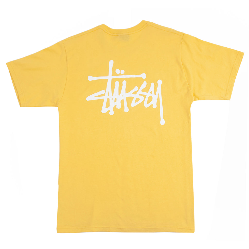 Stussy Basic Stussy T Shirt in Orange