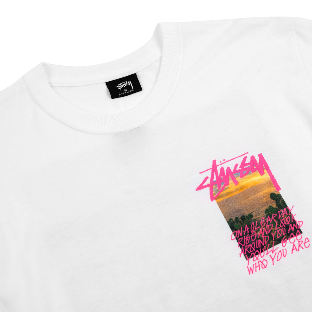 Stussy Clear Day T Shirt in White - Detail