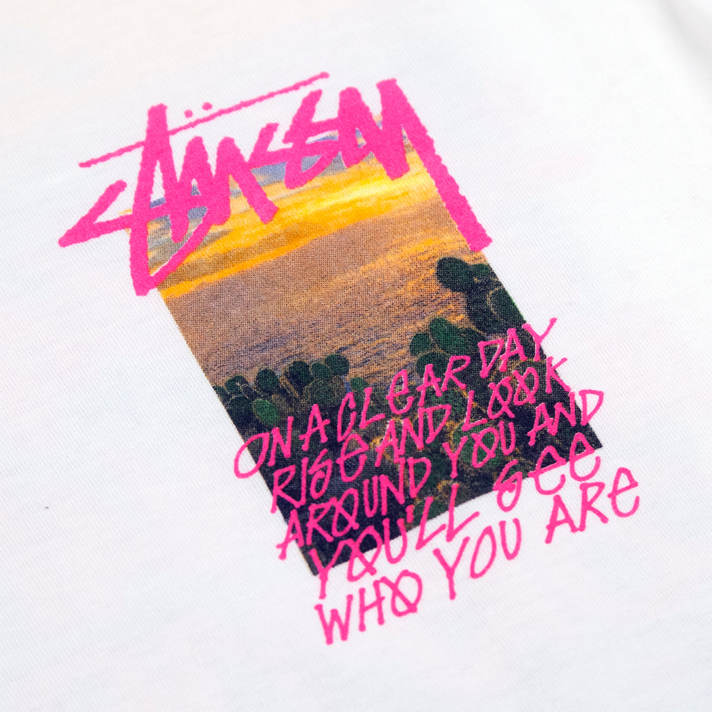 Stussy Clear Day T Shirt in White - Print