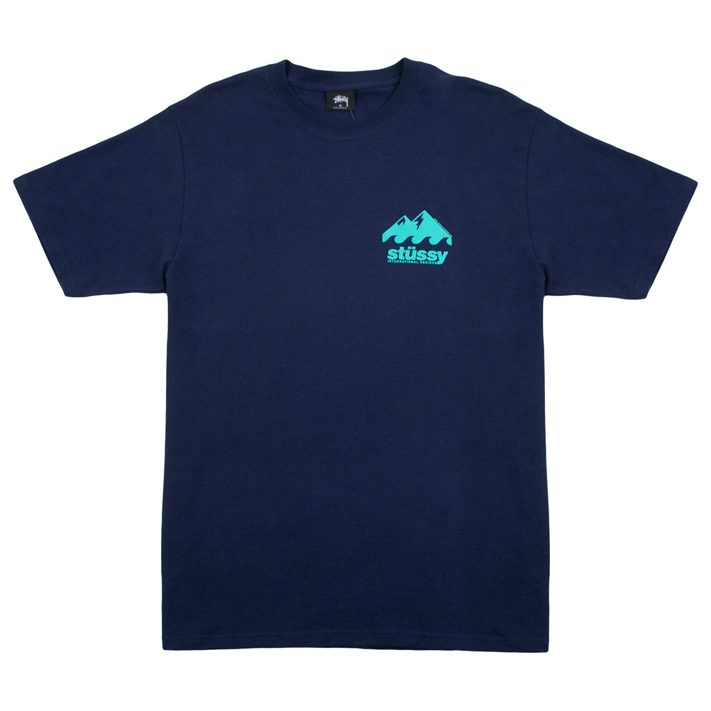 Stussy Coastline T Shirt in Navy