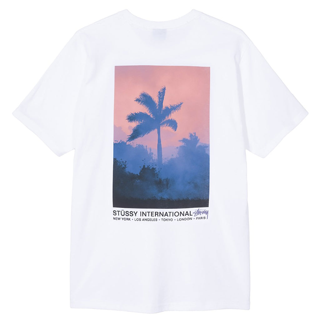 Stussy Fire Palm T Shirt in White