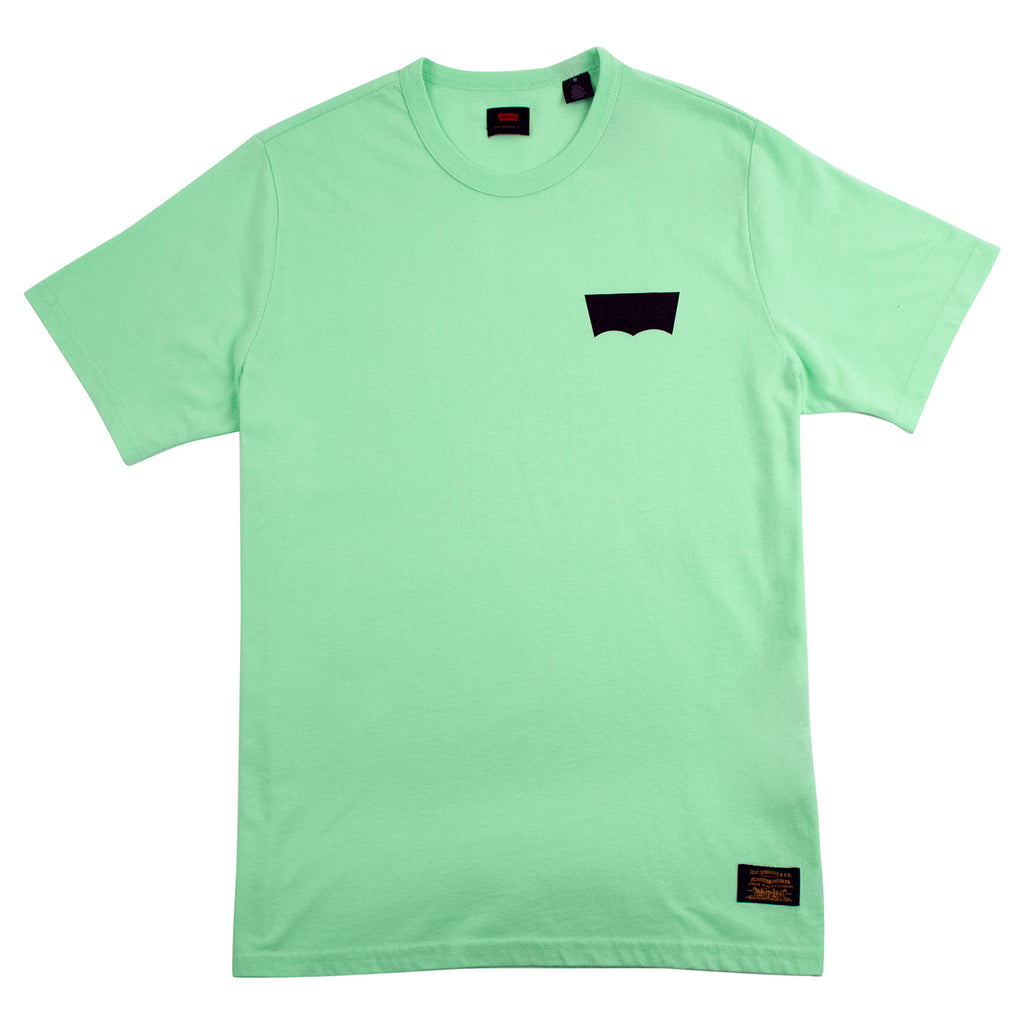Levis Skateboarding Graphic T Shirt in Paradise Green