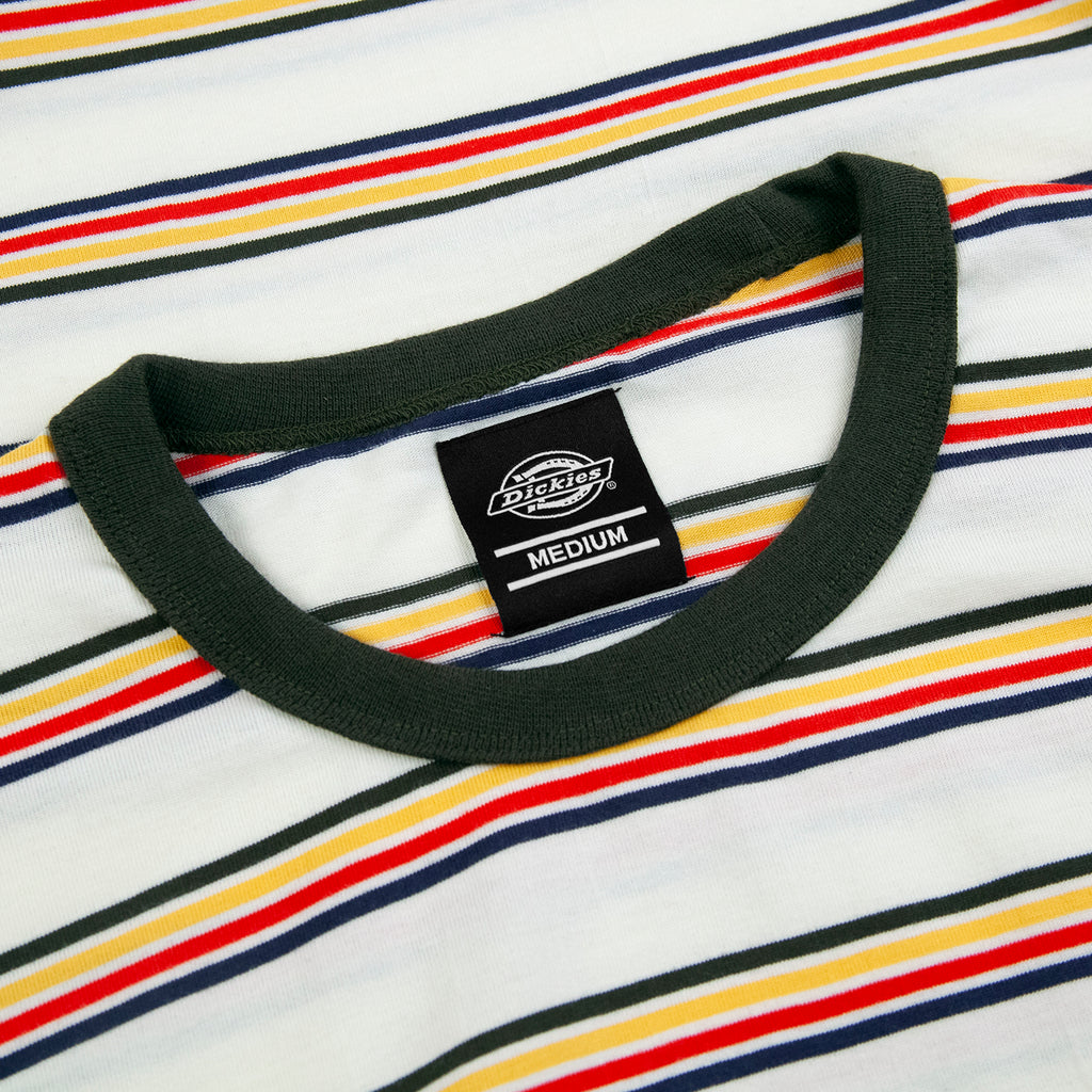 Dickies New Paltz T Shirt in Heath Green - Collar