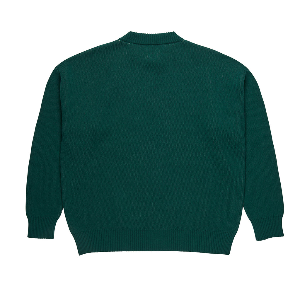 Polar Skate Co Polar Knit Sweater in Dark Green - Back