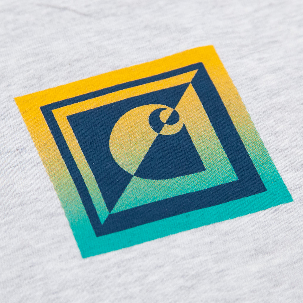 Carhartt WIP Record Club T Shirt in Ash Heather - Print