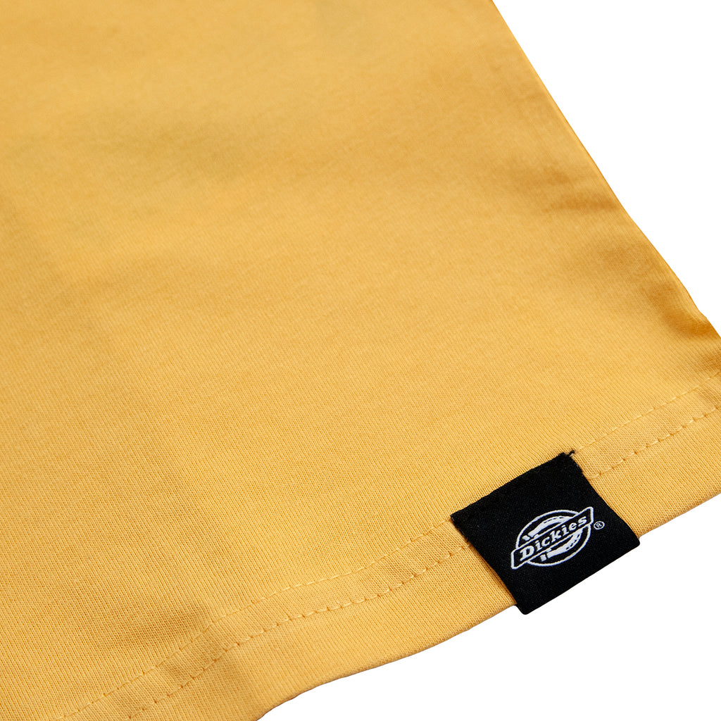 Dickies Stockdale T Shirt in Apricot - Label