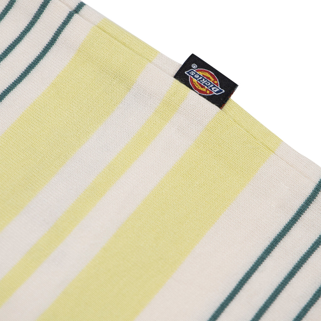 Dickies Wheaton T Shirt in Mellow Green - Flag
