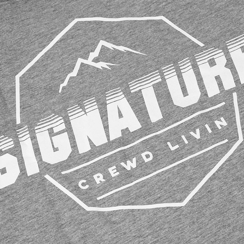 Signature Clothing Mach Peak Logo T Shirt in Heather Grey
