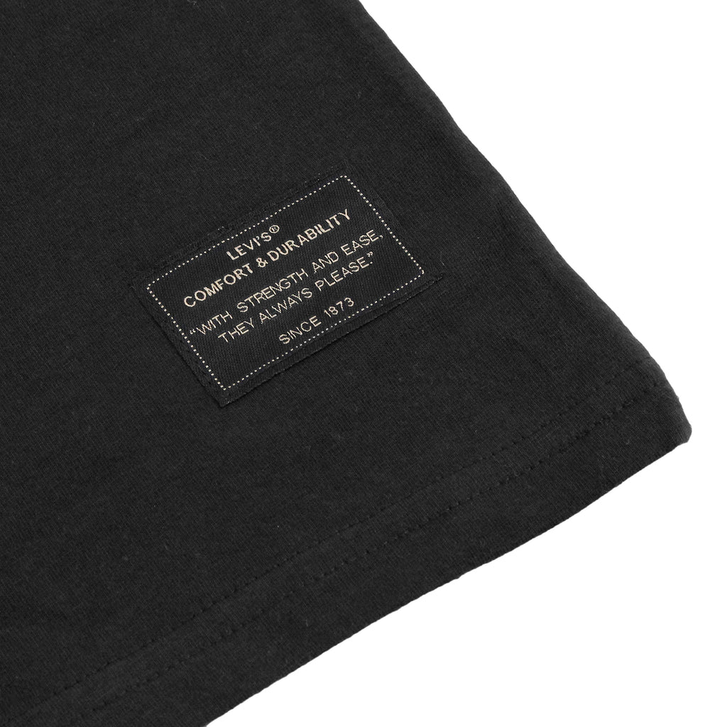 Levi's Skateboarding Collection 2 Pack T Shirt in Black / Glacier Grey Stripe - Label black