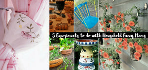 5 Experiments to do with Household Fancy Items