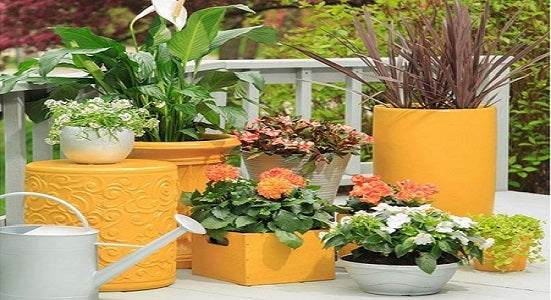 Give A Custom Look To Planter with Rust-Oleum Spray Paint