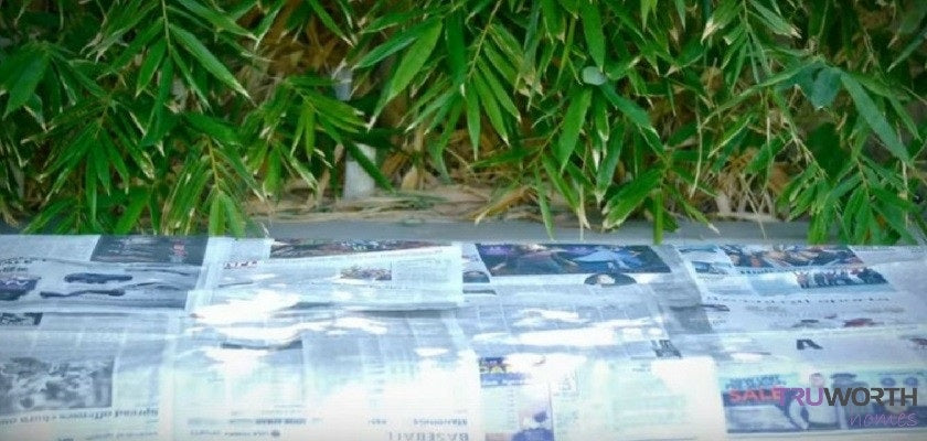 Cover the Surface with Newspaper