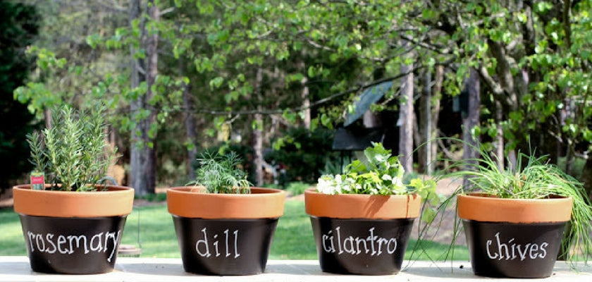 label your garden with plants