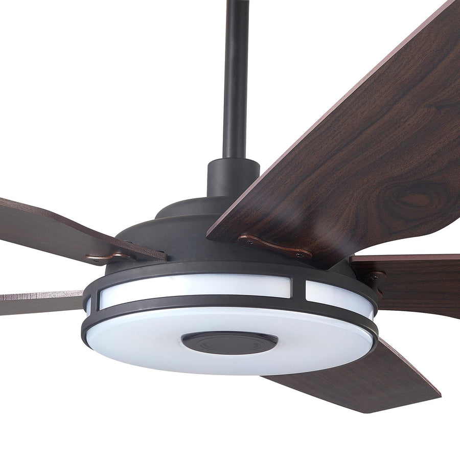 Carro Explorer 56'' 5-Blade Smart Ceiling Fan with LED Light Kit & Remote - Black Case and Dark Wood Fan Blades