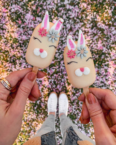 Box of 5 Easter Cakesicles