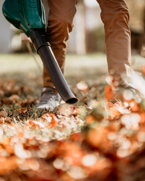 The Leaf Blower Blew Me Away: The Value of Time