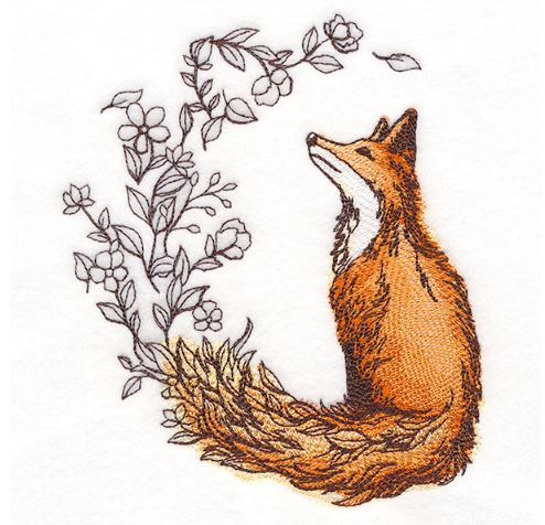 Flower Tailed Fox