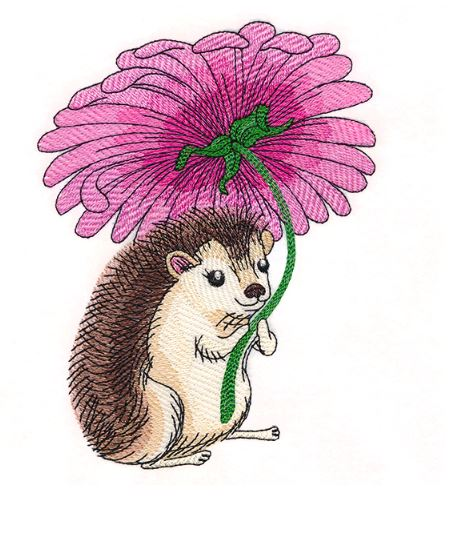 Happy Hedgehog with Daisy