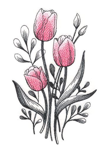 Lovely Tulip Etching