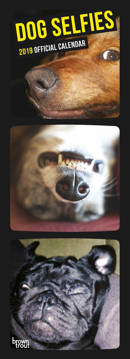 Dog Selfies 2019 Calendar