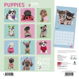 Puppies by Studio Pets Square 2019 Calendar