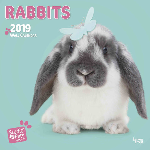 Rabbits by Studio Pets Square Calendar 2019