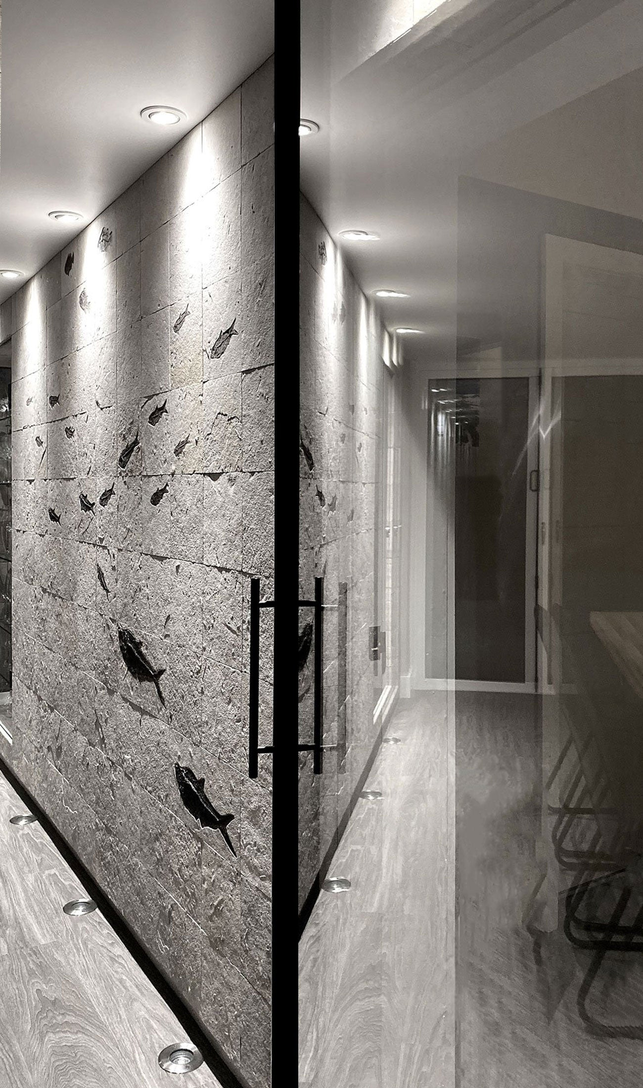 Quality fossil fish tile mosaic fossils for sale for luxury bespoke interior wall fossil designs by THE FOSSIL STORE