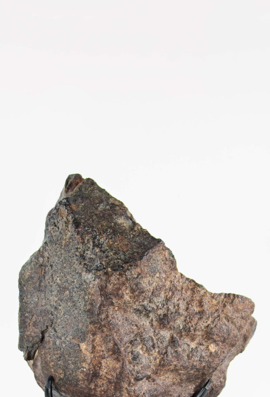 NWA Meteorite on decor bronze plinth